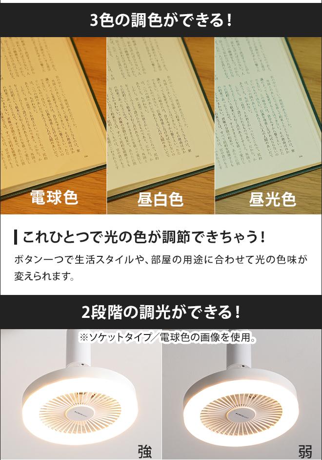 ソケット モデル ライト サーキュ mtlsb.jp: Doshisha