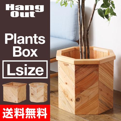 PLT Plants Box Lサイズ おしゃれ