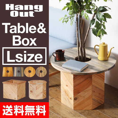 PLT Plants Table & Box Lセット おしゃれ
